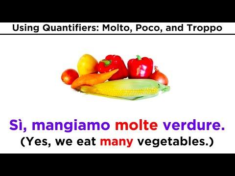 Use of the Words: Molto, Poco, and Troppo