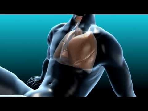 Exercise and Healthy Lungs