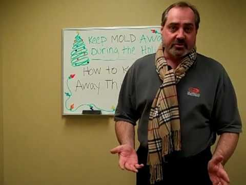 Stop Black Mold - Keep Mold Growth Away this Winter