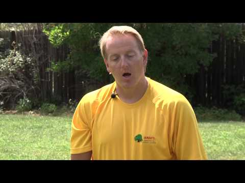 How to Resod After Killing Existing Sod : Sod & Lawn Care