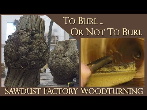 Burl Finds and Turns - To Burl or Not To Burl - Sawdust Factory Woodturning