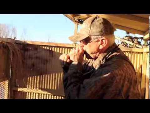Stinson Duck Calls - Jan. 19, 2014