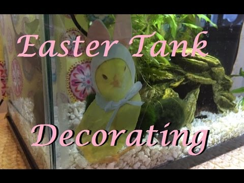 Decorating my Fish Tanks for Easter/Spring! | DIY