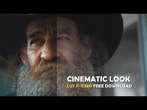 Cinematic Look with LUT F-9380 download (canon 60d and Blackmagic