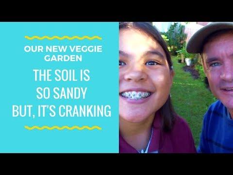 Starting Our Super Sandy Soil Vegetable Garden Build VLOG