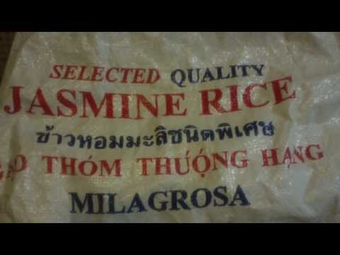 Will white rice from the store grow? Experiment