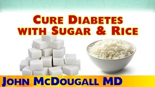 Fat is the cause of Type 2 diabetes, the cure is a low-fat plant-based diet. Here Dr. McDougall discusses the considerable research showing even a diet of table sugar, white rice and fruit juice can cure Type 2 diabetes. And yet a lot of people misguidedly believe sugar is the culprit in this disease.  Incredible!  This is from our recent Expo, you can purchase the full 13 hours of varied, valuable presentations on DVD at: http://bit.ly/1CtnWkm  Follow VegSource on: Facebook: http://www.facebook.com/vegsource Twitter: http://www.twitter.com/vegsource Instagram: http://www.instagram.com/vegsource Website: http://www.vegsource.com