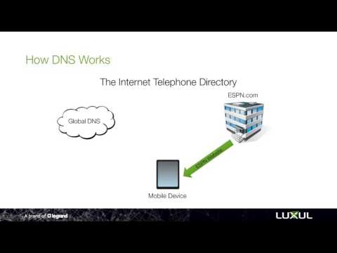 NetSmarts How-To: Set a Specific DNS Address