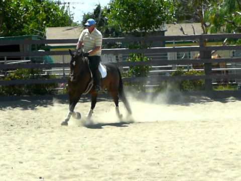 Zip Code - lateral work