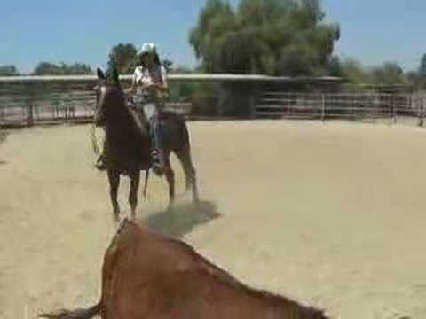 rope trail family husband safe horse for sale, Norco Ca