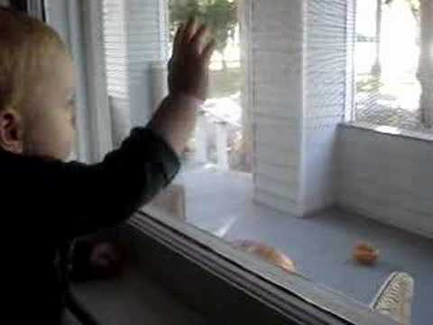 Baby Ethan scares away squirrels