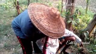Amaro kola Bagane  bangla funny video song