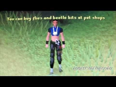 Runescape---!!HD!! How to get a pet gecko