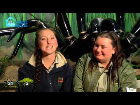 Karla  &  Jess  Bench Diary, Zoo & Snooze Executive Sleepout 2012