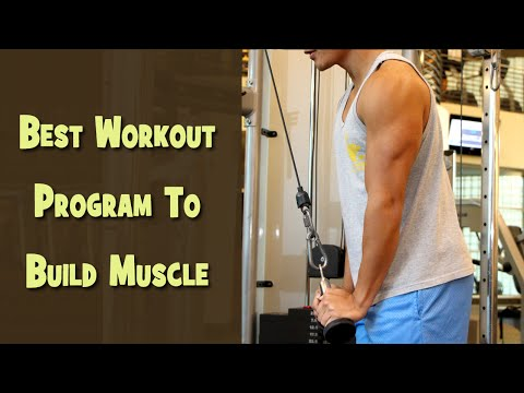 Best Workout Program To Build Muscle - Muscle Building Exercise Plan