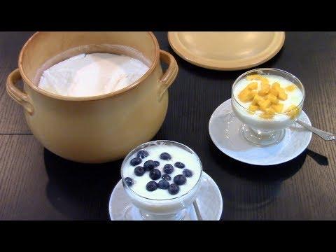 How to Make Homemade Yogurt - No special Equipment Needed