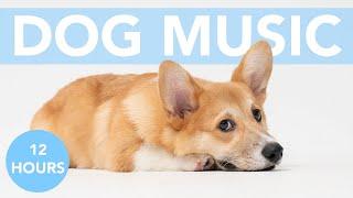 Dog Sleep Music: 12 HOURS of Calming Sleep Lullabies for Dogs!