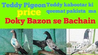 chary mar pigeons 2 k lari Hahahahhaha      - PakVim net HD