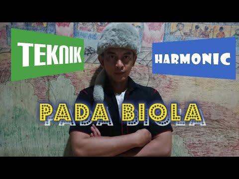 harmonic (artificial harmonic) on violin