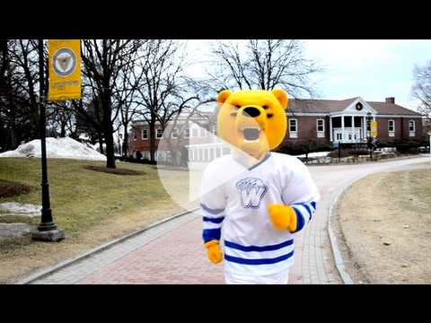 Are you ready to become a Golden Bear?