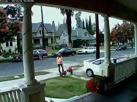 Lady doesnt pick up Dog Poop