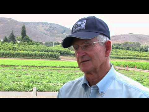 Getting Certified Organic