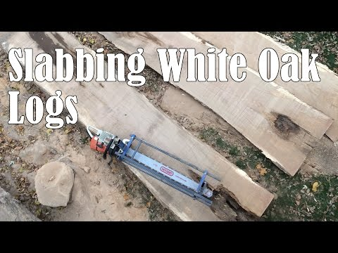 Slabbing White Oak Logs with a Chainsaw Mill