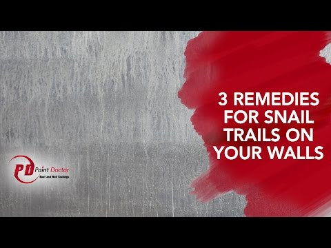 3 Remedies for Snail Trails on Your Walls - #PaintDoctor Ep11