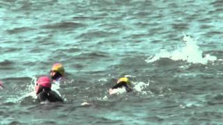 My swim from Alcatraz Island to San Francisco