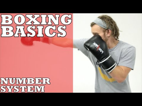 Boxing Basics: Number System