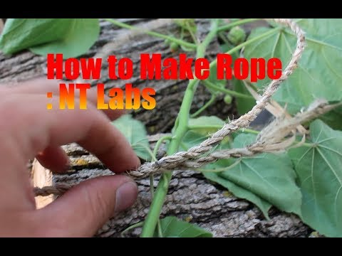 How to make rope from a common weed:Nature's Toolchest Labs...