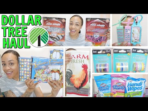 DOLLAR TREE HAUL! WALMART FINDS BRAND NAMES AND MORE!
