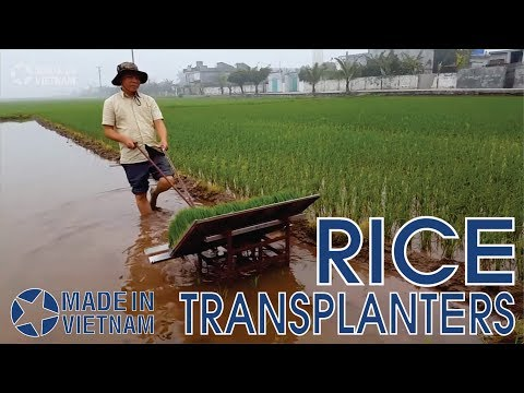 Made In Vietnam | Rice Transplanters