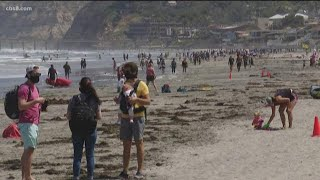San Diegans head to beaches to kick off Memorial Day weekend