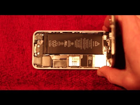 iPhone 5c - How To Check Water Damage Indicator Sticker