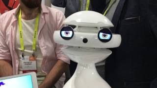 The Robots of CES 2017