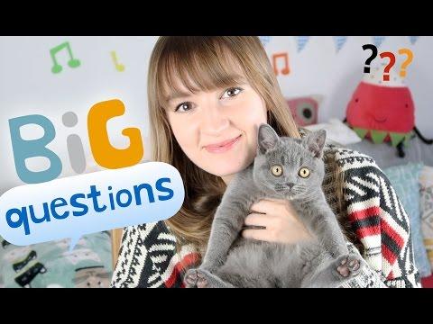 Cats, Plattdeutsch and Television | Big Qs