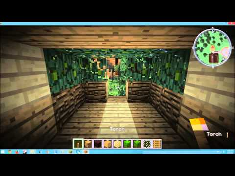 how to build a Kitty cat condo in minecraft