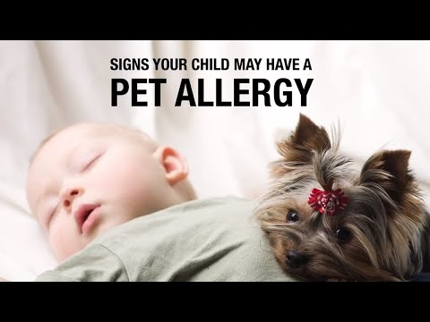 Signs your Child may have a Pet Allergy