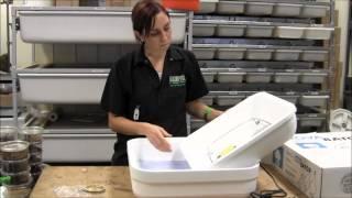 How to setup a hova bator incubator for bearded dragon eggs