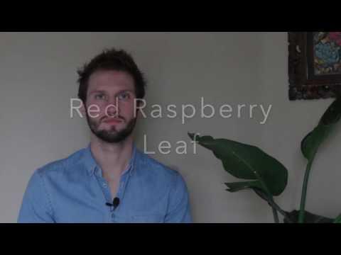 Red Raspberry Leaf Benefits