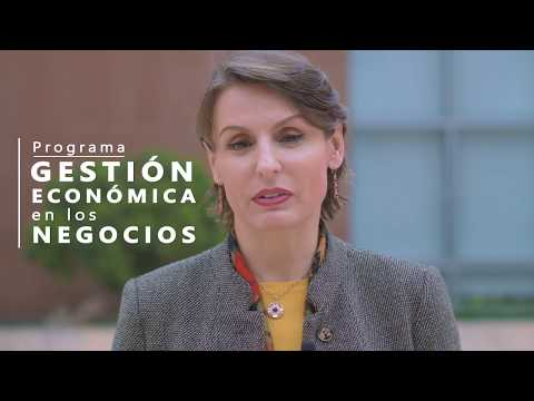 Programa Gestión Económica en los Negocios