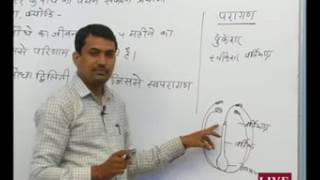 Rajasthan ICT Satellite Education Science Class-10th Genetics 10 August 2017-18 Lecture-16