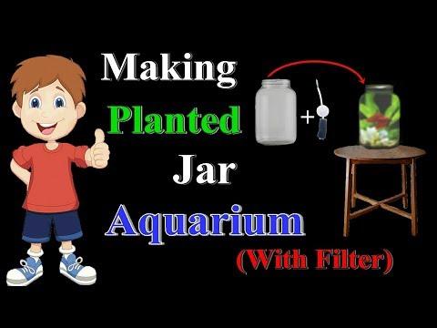 Planted jar aquarium with filter
