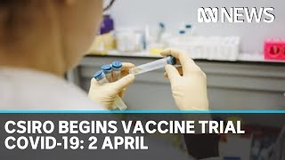 Coronavirus update: The latest COVID-19 news for Thursday 2 April | ABC News