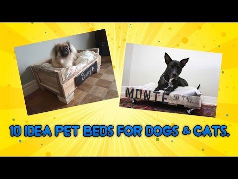 10 idea pet beds for Dogs & cats