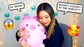Download $400 SQUISHY UNBOXING !! BIGGEST SQUISHIES IN THE WORLD !! Video