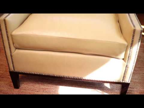 Which Is Better Furniture for Cats & Dogs: Leather or Microfiber? : Design Ingredients