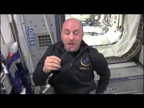 Brushing Teeth in Space