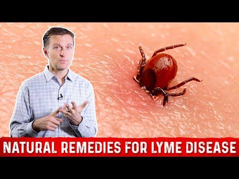 Natural Remedies for Lyme Disease